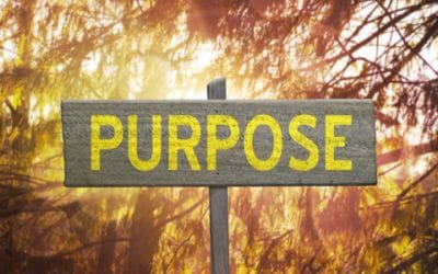 The True Power of Purpose