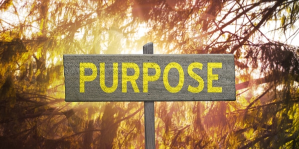The True Power of Purpose