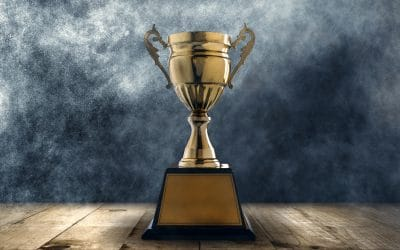 Excellence, One of the Most Powerful Hallmarks of a High Performing Leader